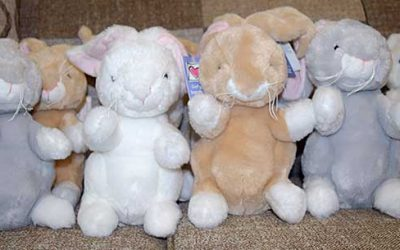 Get Bunnies at Sweet Maries